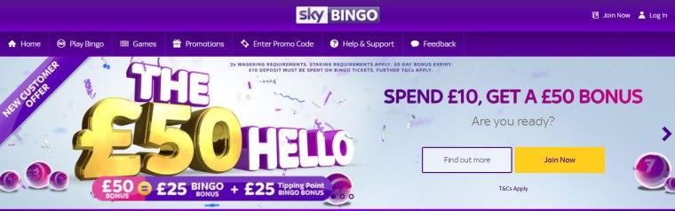 Sky-Bingo-banner