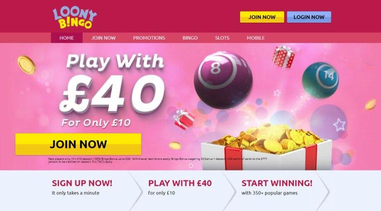Loony-Bingo-banner-1